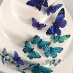 Csodálatos pillangók több színben